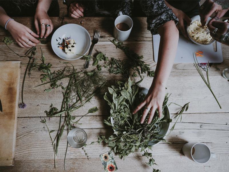 Habitarte-ciclica_Hierbas-y-plantas-medicinales